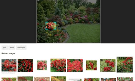 Bing Visual Search lets you search specific objects within