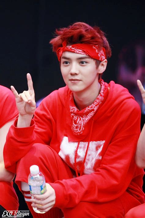 LUHAN: Luhan @ Ilsan FanMeeting HQ Pictures