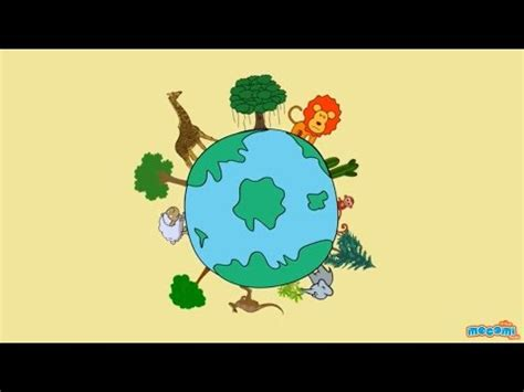 What is Biodiversity & Its Importance? Environmental