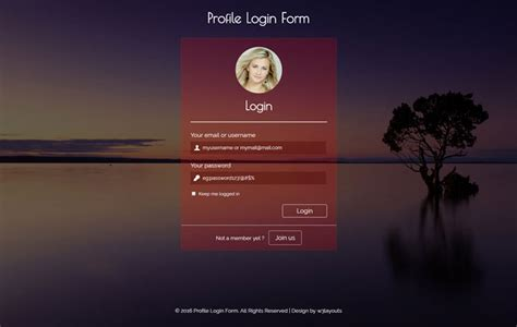 65+ Attractive HTML CSS Login Form Templates