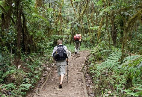 Kilimanjaro | Most of the first stage went through a