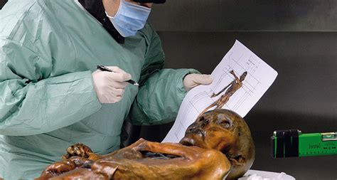 Ötzi the Iceman froze to death   Science News