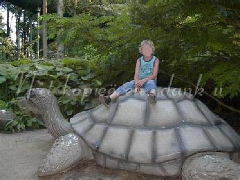 sitting on a giant turtle - Picture of Efteling